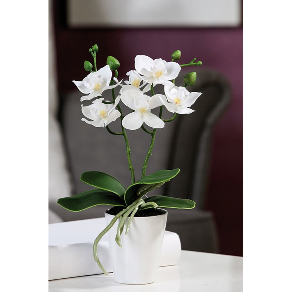 Orchidee Im Topf 6 Bluten Hohe 28 Cm Tischdeko Kunstblume